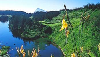 八幡平の景観